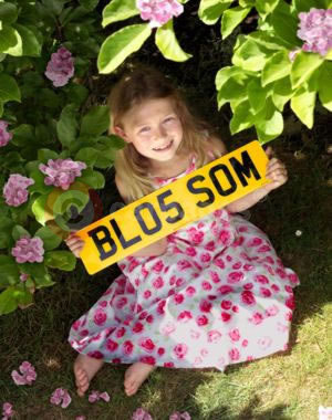 DVLA Personalised Registrations'