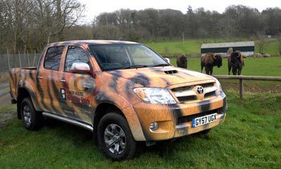 Anna Ryder Richardson's Tiger Striped Toyota Hilux