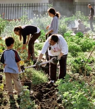 Toyota Invests In New Community Environmental Projects